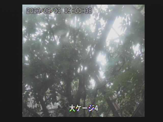 Kushiro webcam - Kushiro webcam, Hokkaido, Hokkaido